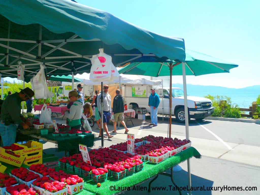 Tahoe City Ca Farmers Market