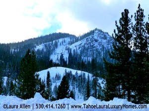 Alpine Meadows CA