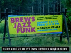 Brews Jazz and Funk Festival - Squaw Valley 2017