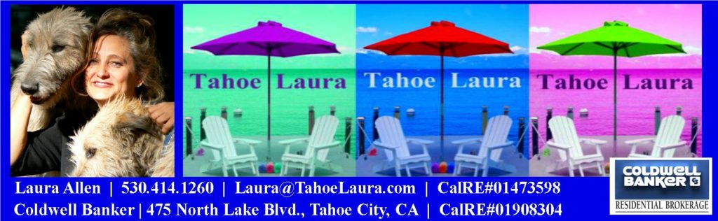 Laura Allen, Lake Tahoe-Truckee Real Estate Agent