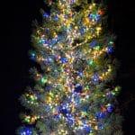Holiday Tree Lighting – Kings Beach 2018