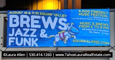 Brews Jazz and Funk Festival - Squaw Valley 2019