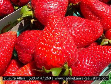 Strawberries from the Farmers Market